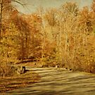 Autumn Drive by Sandy Keeton