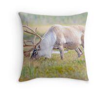 woodland caribou Throw Pillow