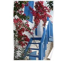 Flowers and Stairs Poster