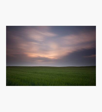 sunset fields Photographic Print