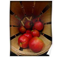 Apples in Barrel Poster