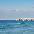Navarre Pier, Florida by Carina Potts
