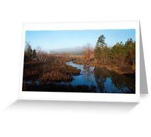 Morning Calm. Jordan Lake, NC Greeting Card