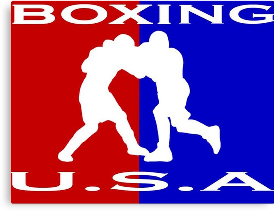 U.S.A. Boxing logo by Euvari