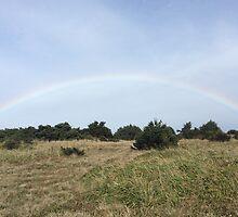 Rainbow on the Cliffs by Dillan Holman