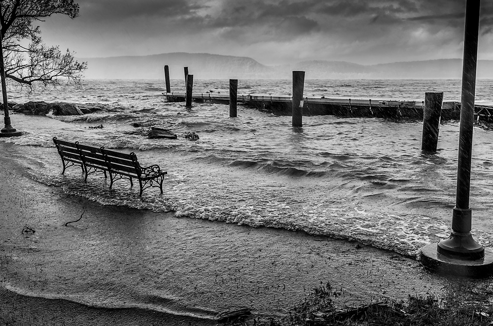 Watching Sandy down by the riverfront by alan shapiro