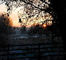 Frosty Christmas Eve Sunset by Aishling O'Neill