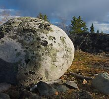 Lichen Covered Rock - Yellowknife, NWT, Canada by Phil McComiskey