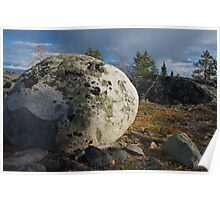 Lichen Covered Rock - Yellowknife, NWT, Canada Poster