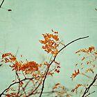 Autumn Happenings by beverlylefevre