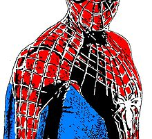 Spider-man by bolincradleyart