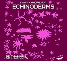 I Am Thankful For Echinoderms by PepomintNarwhal