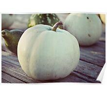 white pumpkin Poster