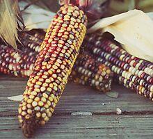 harvest by beverlylefevre