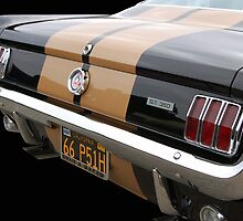 Hertz GT 350 by Bill Dutting