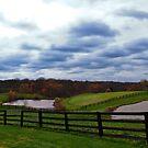 Meadowview Farm by Jeanne Sheridan