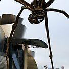 Gugghenheim Bilbao Spider by Unai Ileaña