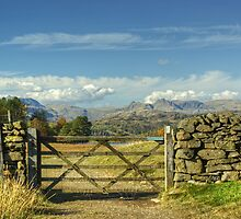 A Langdale View by Jamie  Green