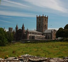 St Davids Cathedral by Chippe