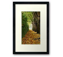 Autumn alley Framed Print