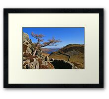 A Quick Glimpse Framed Print