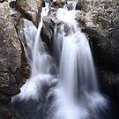 Falls by James Stevens