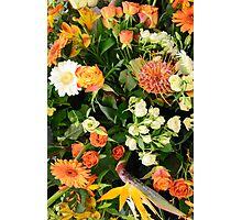 Exotic Orange Photographic Print