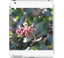 Red Spider on Web iPad Case/Skin