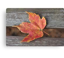 Autumn on the Bench Canvas Print