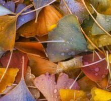 Fall Ginkgo Leaves Sticker