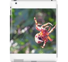 Red Spider on Web 2 iPad Case/Skin