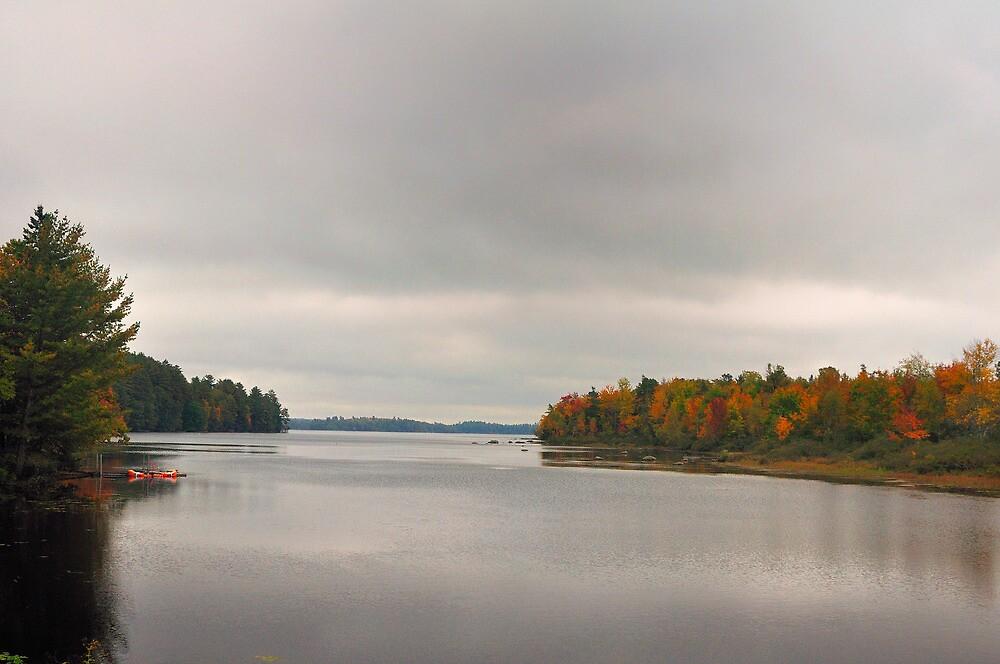 Toddy Pond, Bucksport, Maine by fauselr