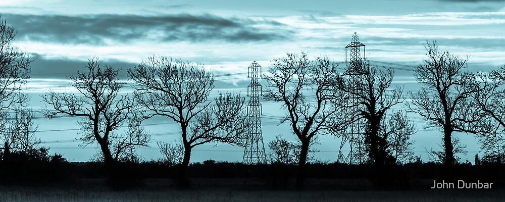 Tree Lines by John Dunbar
