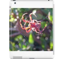 Red Spider on Web 4 iPad Case/Skin