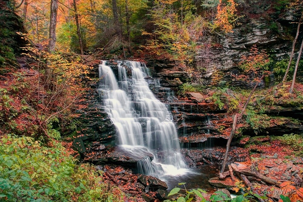 Rainy Autumn Afternoon At Erie Falls by Gene Walls