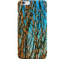 Blue Cane iPhone Case/Skin