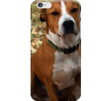 Buster the Dog iPhone Case/Skin