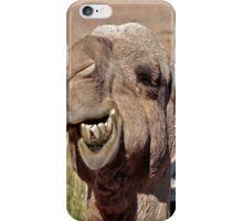 Camel iPhone Case/Skin