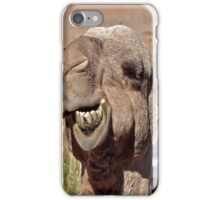 Camel iPhone Case/Skin