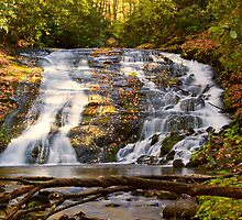 Indian Creek Falls by dlhedberg