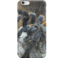 Big Hairy Tarantula iPhone Case/Skin