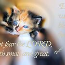 He Will Bless Them That Fear The Lord by aprilann