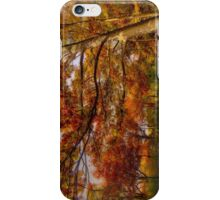 Fall Road,Chestnut Hill, Massachusetts iPhone Case/Skin