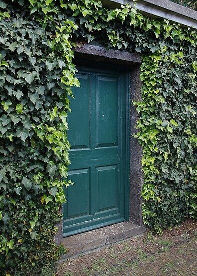 Green Door by AnnDixon