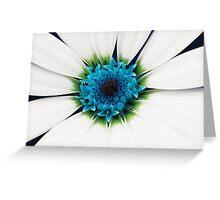White petals Greeting Card
