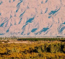 Yuma Valley by barnsis