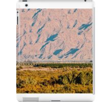Yuma Valley iPad Case/Skin