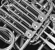 French Horn by Steven Gibson