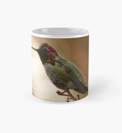 Male Anna's Hummingbird Mug