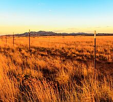 Barbed Wire Fence New Mexico by bengraham
